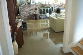 Flooded Basement and Mold Source