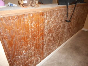 Mold On Cabinets